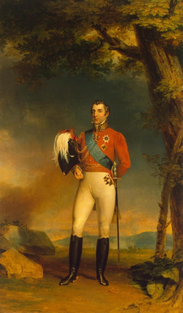 Portrait of Duke of Wellington (1769-1852)