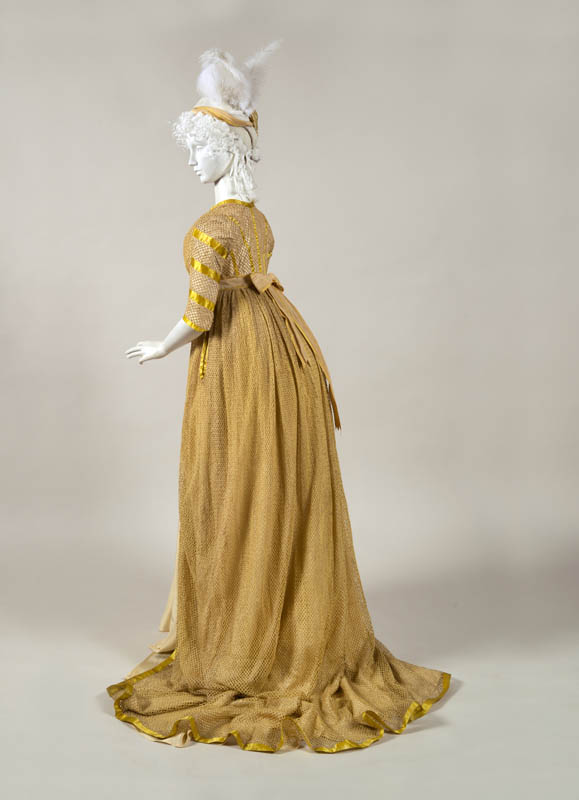 Trained Gown of Netted Cotton